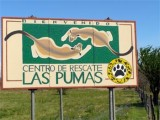 Las Pumas Rescue Center